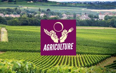 Programme agriculture: Pour favoriser les circuits courts afin de garantir une agriculture de proximité!
