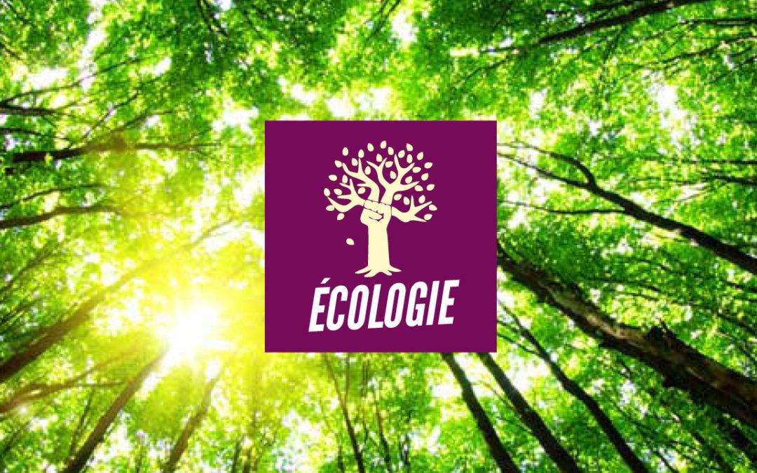 Programme écologie