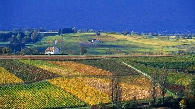 Un large soutien à l'agriculture biologique