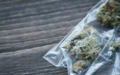 Trafic de stupéfiants: Comment limiter les nuisances?